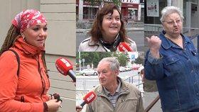 Politici kradou a slibují stromy tam, kde už vyrostly, říkají Češi, proč nešli k volbám