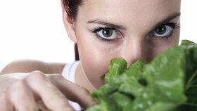 Je čas předpěstovat zeleninu! 5 zaručených rad, díky kterým letos uspějete