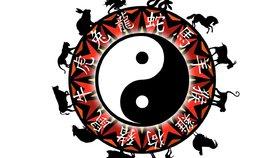 Horoskop na další týden: Koním se bude dařit v práci, Draky potrápí únava