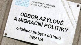 Azylanty čeká práce i výuka češtiny. Na pomoc přispěchají stovky firem