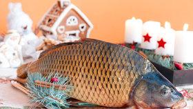 Kapr pro děti! Podívejte se, jak rybu připravit tak, aby ji milovaly!