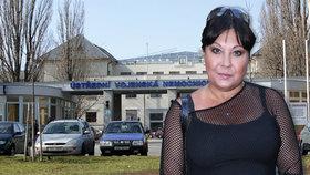 Zkažený konec roku Dády Patrasové: Skončila v nemocnici!
