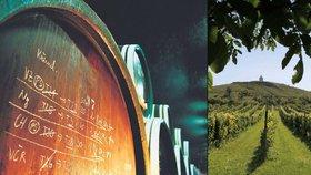 Pančování vína prý změna zákona nezabrání. Expert: Odnesou to poctivci
