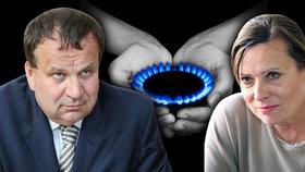 Nemravné marže u plynu? Šéfku ERÚ Vitáskovou podpořil ministr průmyslu Mládek: Začněte konat!
