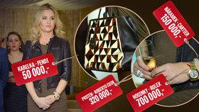 Babišová v Alzheimercentru: Dorazila v doplňcích za 1 220 000 Kč!