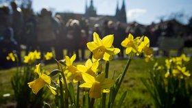Jaro se s námi sobotou rozloučí: V neděli se zatáhne a začátek týdne proprší