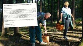 Za houbaření a výlet do lesa 30 tisíc pokuta? Odpůrci podepisují petici