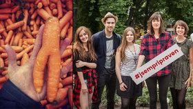Koupíme i bramboru pod 4 cm, podepisují Češi. Kývnou obchody na křivou zeleninu?