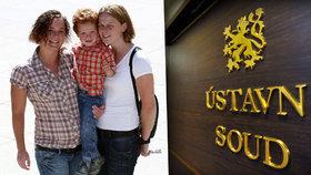 Ústavní soud je pro adopce dětí registrovanými páry. Nadace Rowlingové tleská