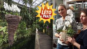 Krainová láká důchodce do botanické na vstup zdarma. Má ale podmínku