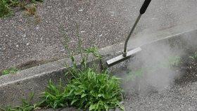 Úspěšný boj s plevelem: V Modřanech ho likvidují vodou horkou 98 stupňů