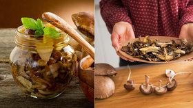 Houby rostou, takže sušte, duste, zavařujte: Přinášíme vám 10 tipů na zpracování hub!