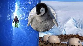 Dovolená »na jiné planetě«: Na Antarktidě byl otevřen pětihvězdičkový hotel!