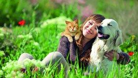 Na psích a kočičích kamarádech lidé nešetří