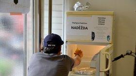 S plýtváním je konec: Naděžda v Bio Oku pojme nevyužité jídlo a předá ho dál