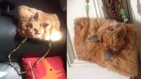 Šokující módní doplněk: Kupte si kabelku s vycpanou kočičí hlavou!