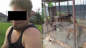Zaplatím pohřeb, nabízí majitel psů, kteří zabili malého chlapce (†5)