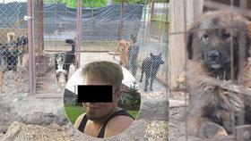 Psi v Lužci rozsápali chlapce (†5): Zaútočil první tento pes? Majitel je chce utratit všechny