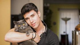 Pomazlete se! Už i kočky se seznamují na internetu. A mají úspěch!