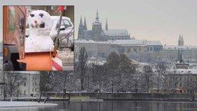 Listopad do metropole přinese první sníh a náledí: Jak je na zimu Praha připravená?