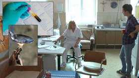 Doktorka dětských narkomanů: Drogy nejsou jediné riziko, děti ohrožuje žloutenka