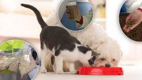 """Reportáž z """"granulárny"""": Zvířecí mazlíčci se stravují mnohdy kvalitněji než lidé"""