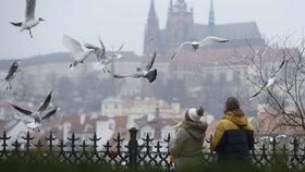 Po Vánocích přijde ochlazení, déšť a sníh. V Praze se oteplí zase až na Silvestr