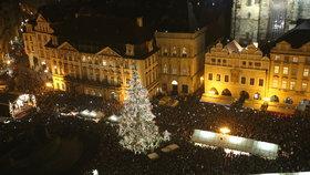 Začíná hledání vánočního stromu pro Prahu. Vítěz získá 10 tisíc korun