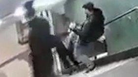 Zvířata v Berlíně: Tři muži s pivem v ruce skopli ženu ze schodů a odešli