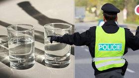 Posilvestrovský alkoholový pomocník: Jak rychle se vstřebává alkohol?