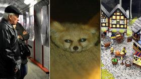 Kam o víkendu v Praze: Do bunkru, za zvířaty ve tmě či na lego