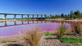 Jezero v Austrálii náhle zrůžovělo. Co je za tím a dá se v něm koupat?