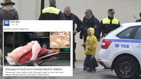 České děti jsou tyrani! O brutální smrti plameňáka v Jihlavě píše britský Daily Mail