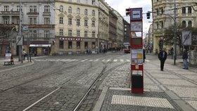 Mezi Vltavskou a »Strossem« nepojedou tramvaje: Oprava potrvá skoro celý srpen