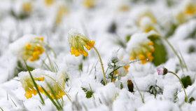 Dubnovému sněhu není konec. Přes noc může napadnout 8 centimetrů