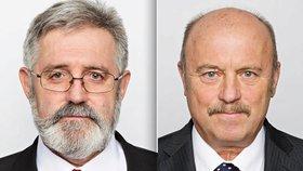 Vydejte poslance kvůli čachrům s dotacemi, poradil Sněmovně výbor