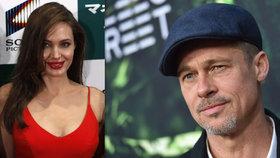 Brad Pitt poprvé od rozchodu s Angelinou promluvil: Nebyl den, kdy jsem nechlastal!