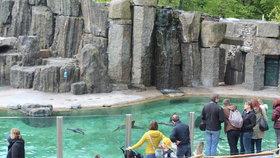 V trojské zoo a botanické zavedou wi-fi zdarma. Fungovat má za pár měsíců