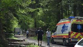 V lese u Řevnic našli zastřeleného muže: Spáchal sebevraždu?