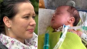 Čtyřměsíční Mário se po operaci v Motole vrátil domů: Rodiče plakali štěstím