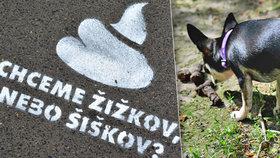 """Praha 3 posprejovala chodníky. """"Chceme Žižkov, nebo Šiškov?"""" ptá se"""