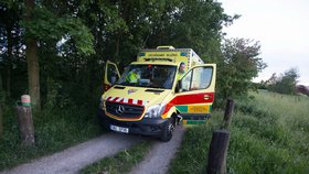 Žena spadla v Dalejském údolí z desetimetrové skály: Zachránil ji mobil