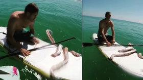 Útok z hlubin: Krakatice obmotala chapadla kolem surfu paddleboardisty