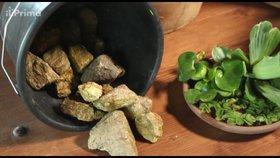 Vychytávky Ládi Hrušky: Vyrobte si malé zahradní jezírko