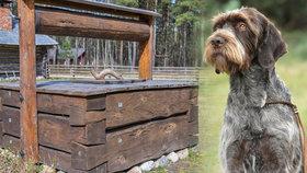 Hrůzné týrání: Muž na Prostějovsku zřejmě hodil psa do studny a zavřel poklop