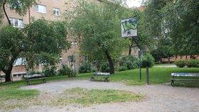 Park v Krči, kde někdo věší boty na stromy, se opravuje: Mizí výmoly a louže