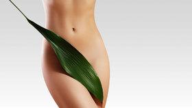 Umíte si bezpečně holit intimní místa?