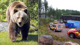 Krvák ve švédské zoo: Medvěd před návštěvníky roztrhal ošetřovatele