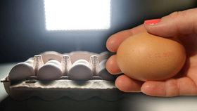 Otrávená vejce z Nizozemí se objevila i na Slovensku. Obsahují toxickou látku