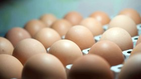 """Velká vaječná aféra: """"Očerňování nepomůže."""" Komise svolává zasažené země"""